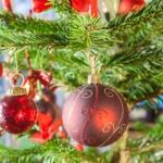 Buonpertutti buoni sconto: ecco le novità di dicembre